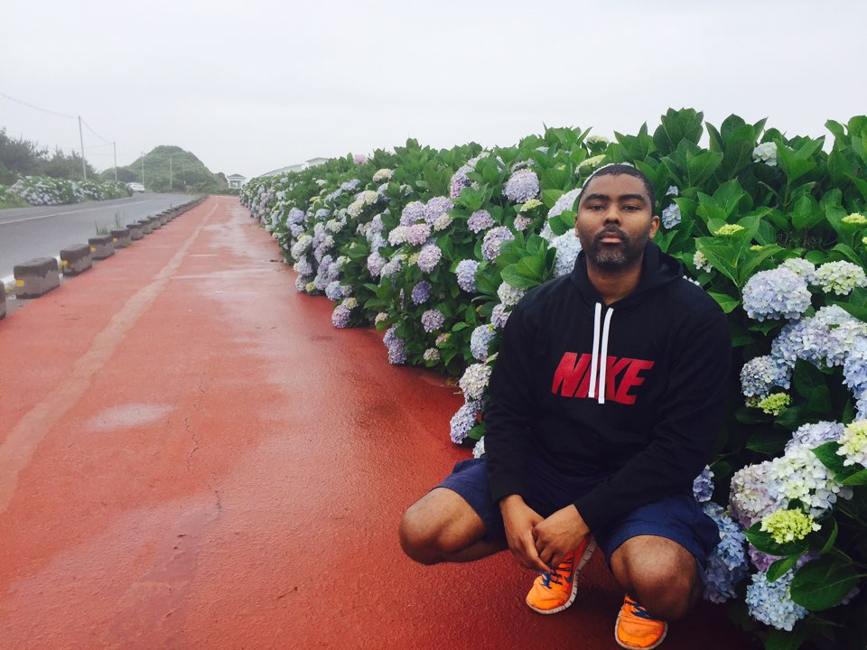It's Hydrangea season on Jeju