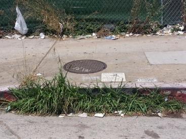 That drain